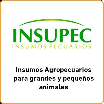 Insupec_Index
