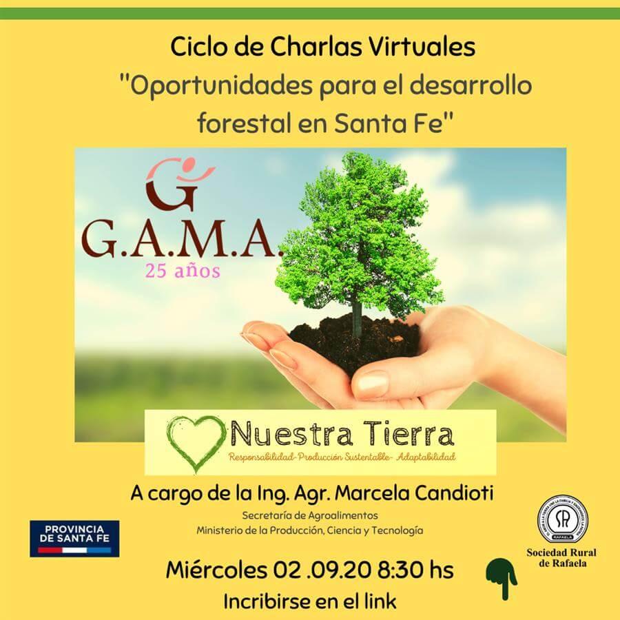 En este momento estás viendo «Oportunidades para el Desarrollo Forestal en Santa Fe»