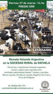 Lee más sobre el artículo Expo-venta de Vaquillonas Holando Argentino