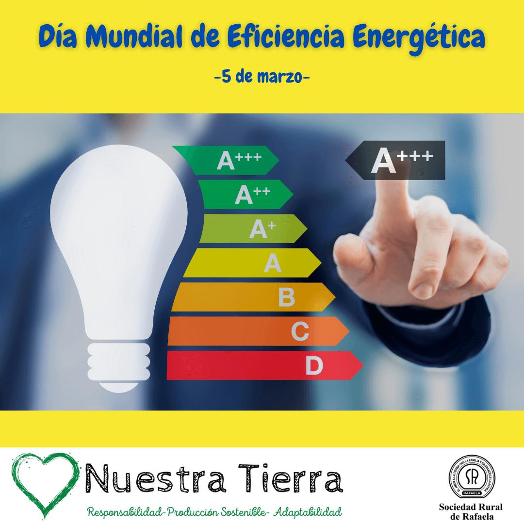 En este momento estás viendo 5 de marzo: Día Mundial de la Eficiencia Energética
