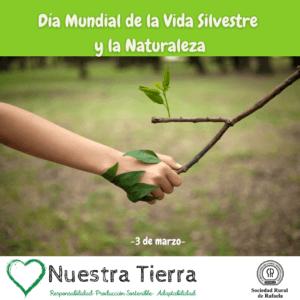 Lee más sobre el artículo 3 de Marzo- Día Mundial de la Vida Silvestre