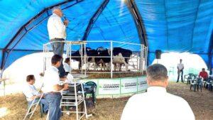 Lee más sobre el artículo Exitosa Expo Venta de Vaquillonas en SRR